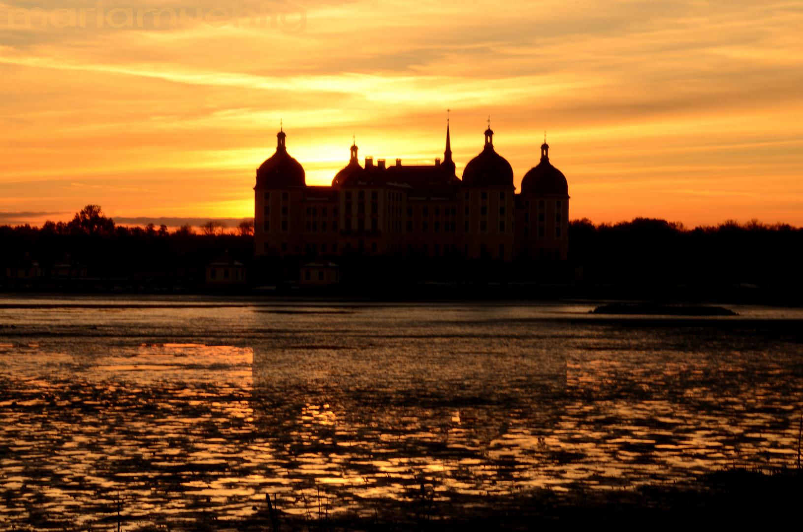 Schloss Moritzburg in der untergehenden Sonne