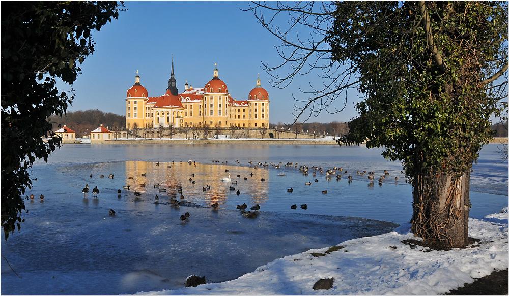 Schloss Moritzburg vor den Toren Dresdens ...