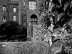 Schloss Moyland #1