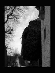 Schloss Mylau 07