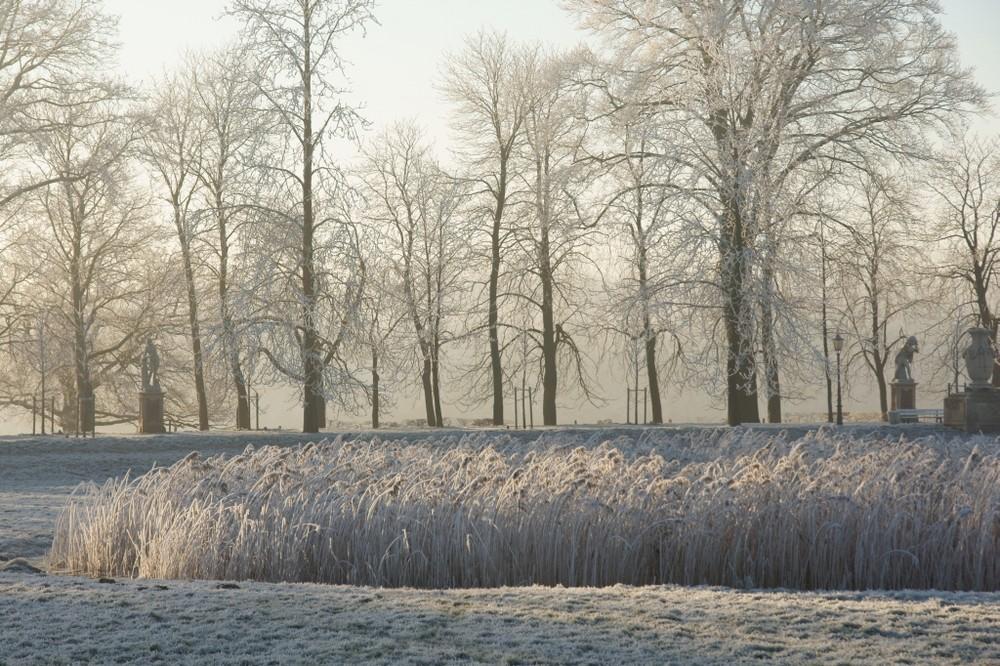 Schloss Nordkirchen - Winter im Park