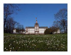 Schloss Philipsruhe