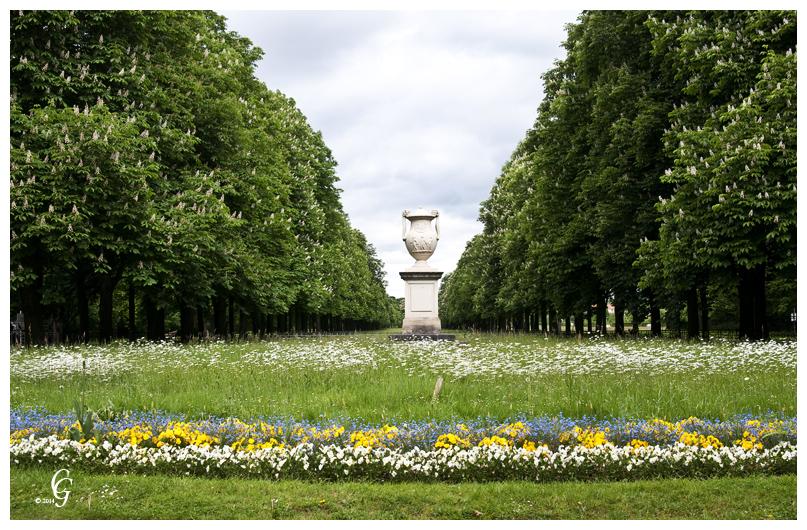 Schloß Pillnitz Park 1