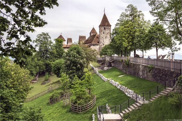 Schloss Rapperswil SG
