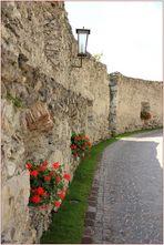 """""""Schloss Sonnenburg"""" (2)"""