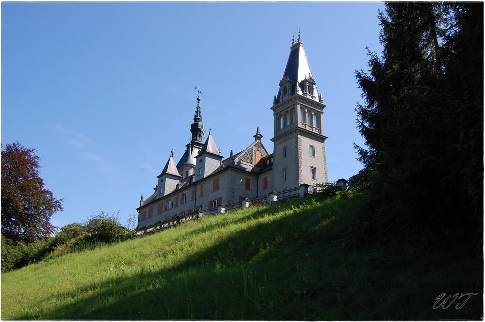 Schloss Tägerwilen
