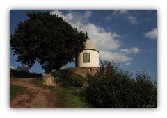 Schloss Wackerbarth 8