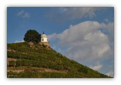Schloss Wackerbarth 9