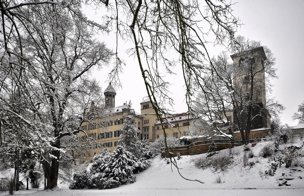 .........::::::::::::::::: Schloss Waldenburg / Sachsen ::::::::::::::::::..........