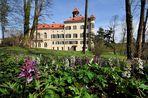..................:::::::::::::::::: Schloss Waldenburg/Sachsen :::::::::::::::::.................