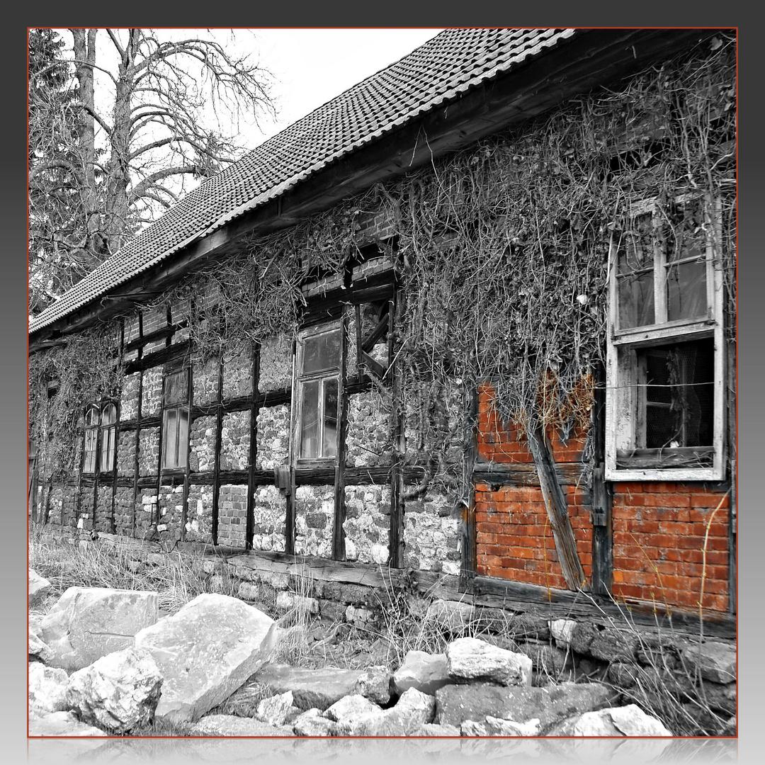 Schloss Wilhelmsthal 13