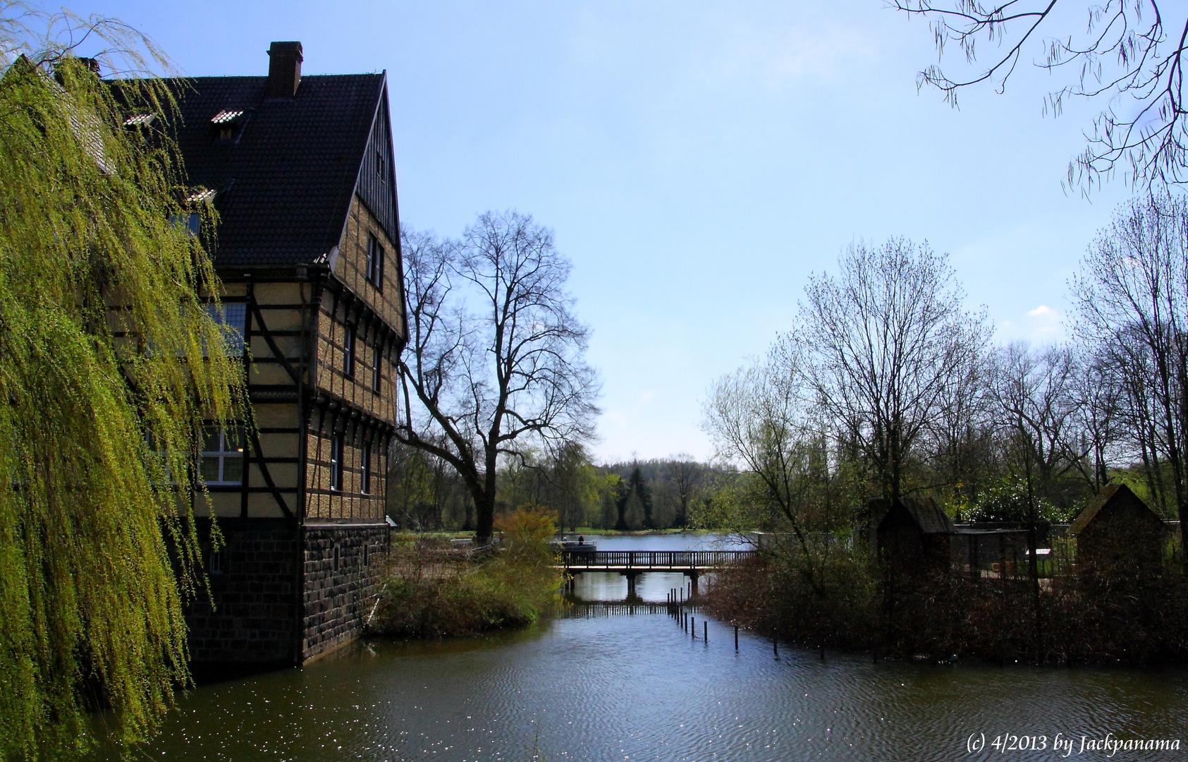 Schloss Wittringen in Gladbeck (1)