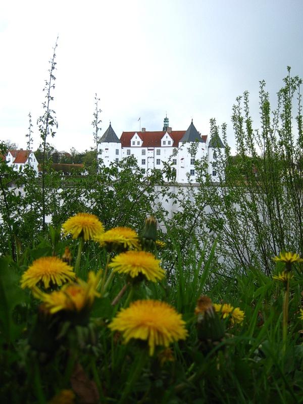 Schlossblume