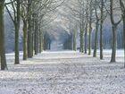 Schlossgarten Allee