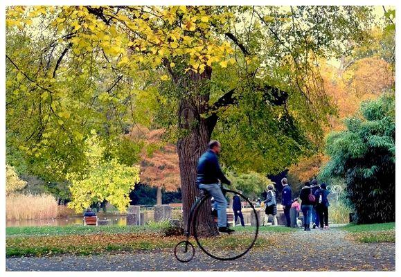 Schloßgarten Karlsruhe, Draisine
