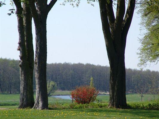 Schloßgarten Vanselow im Tollensetal
