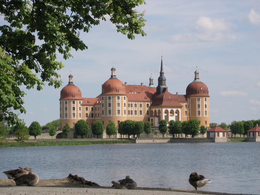Schloß_Moritzburg