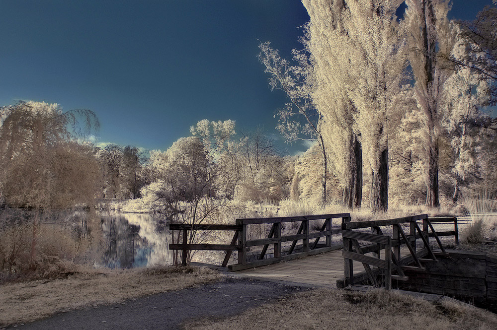- Schlosspark -