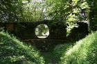 Schlosspark Dennenlohe_2