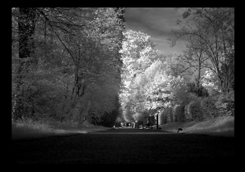 Schlosspark Donzdorf