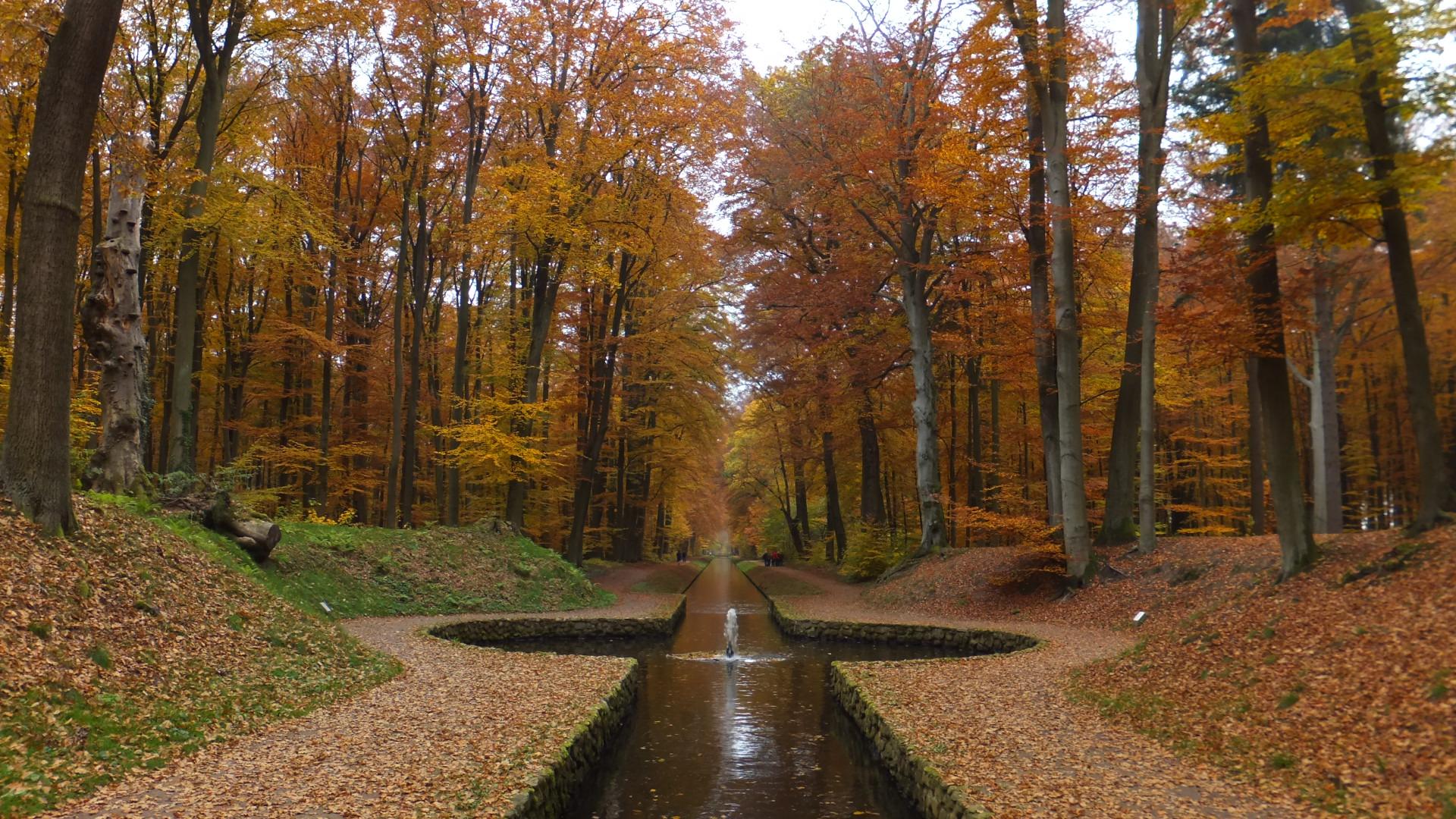 Schlosspark im Blätterrausch