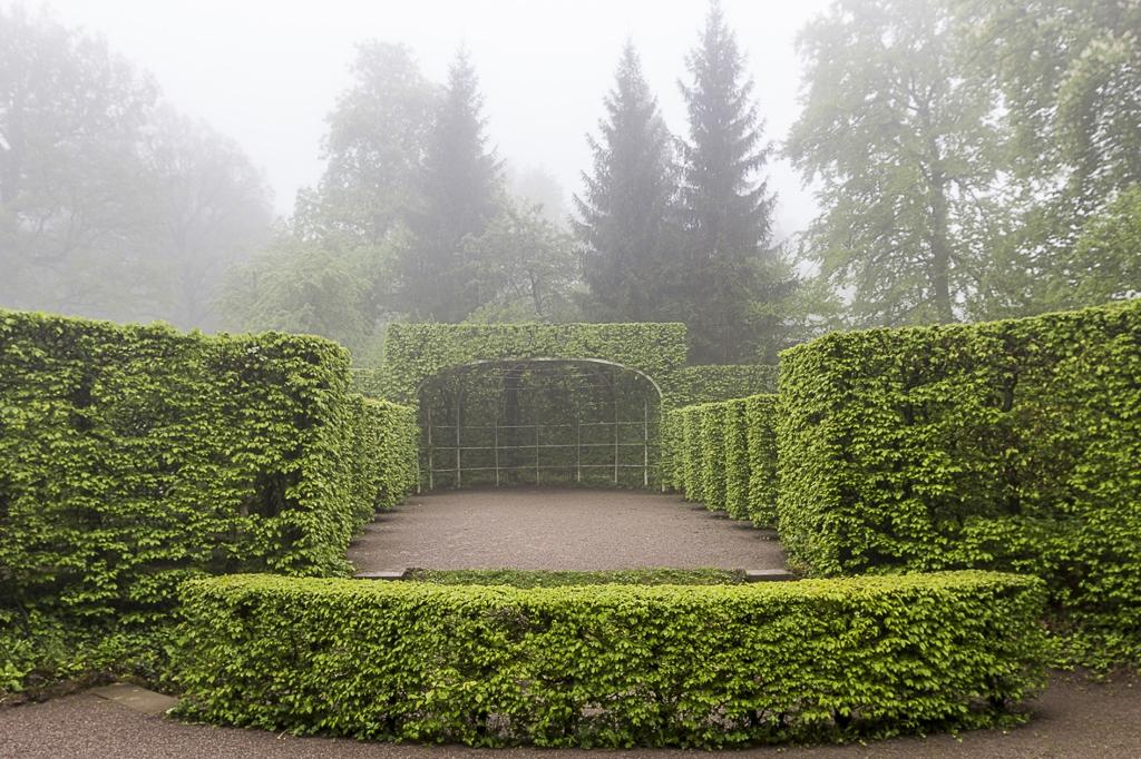 Schlosspark im Frühnebel 2