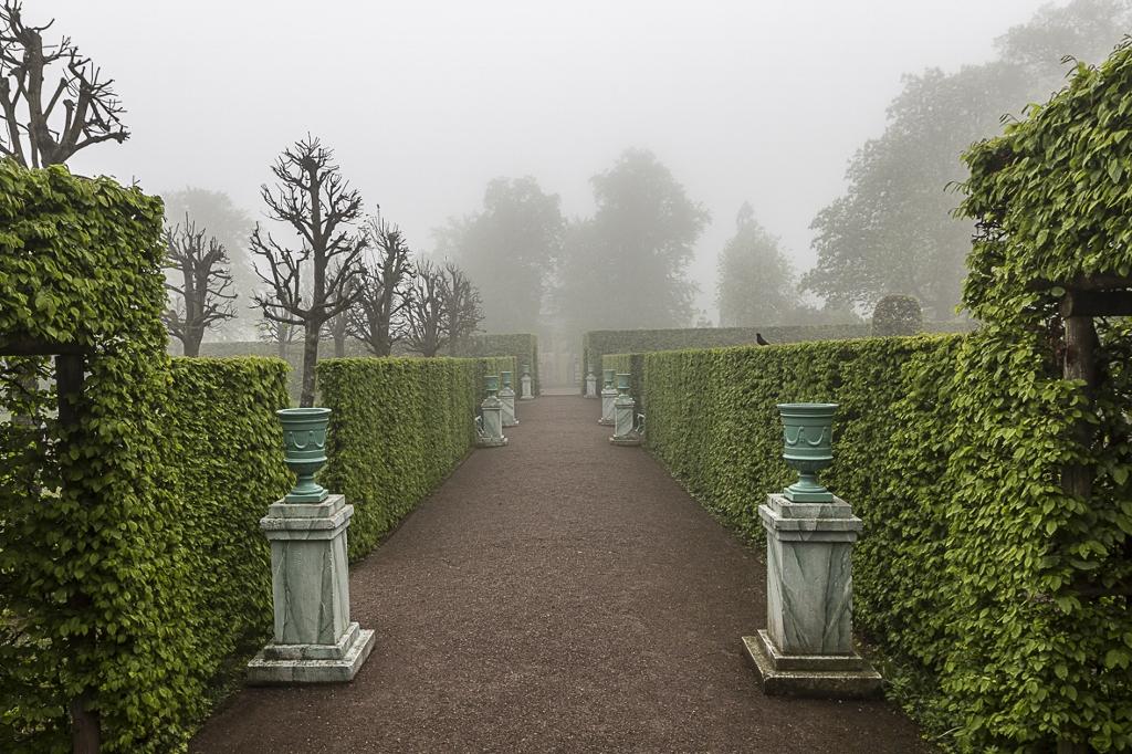 Schlosspark im Frühnebel 3