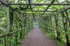 Schlosspark im Frühnebel 4