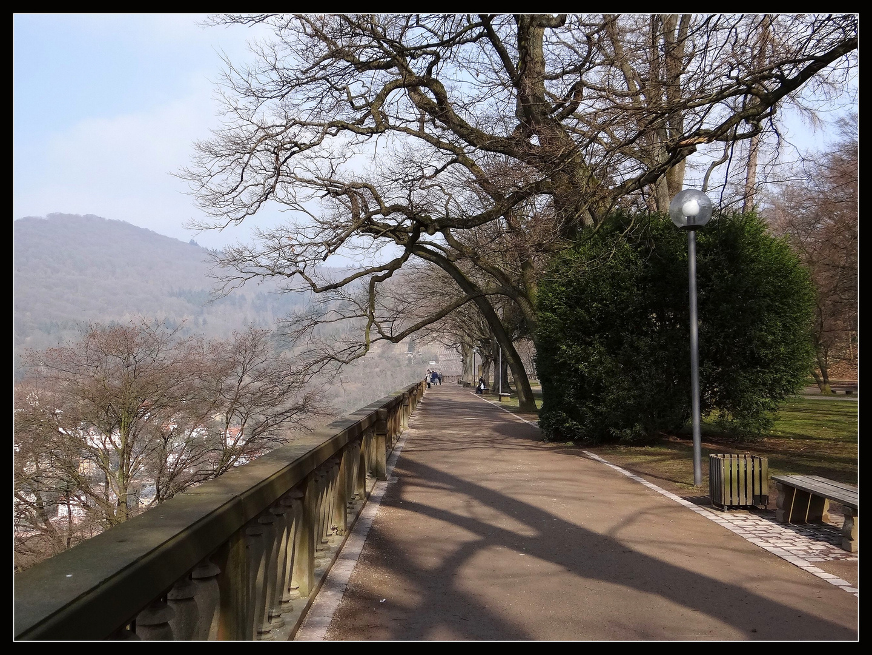 Schloßpark in Heidelberg