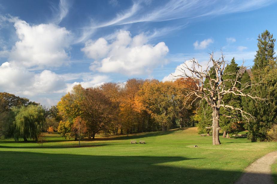 Schlosspark Kaarz