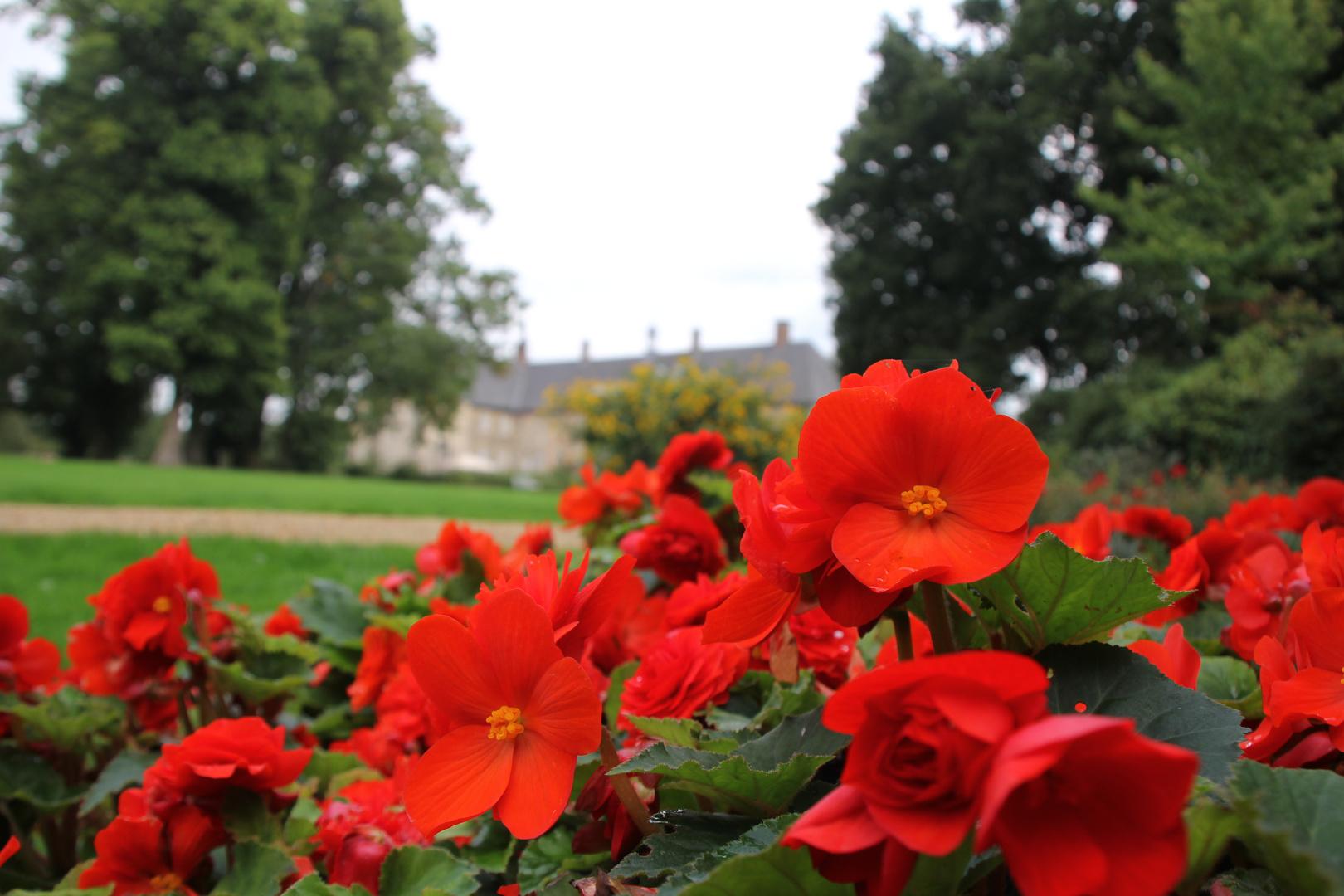 Schlosspark Lembeck 3