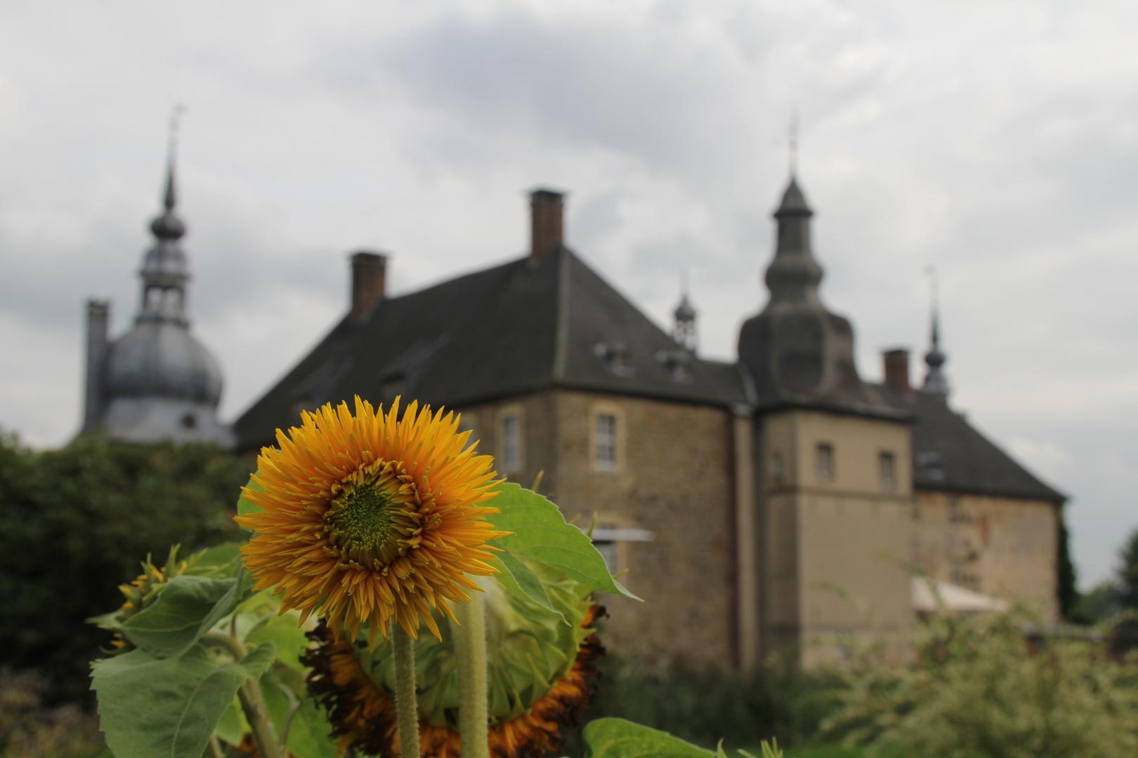 Schlosspark Lembeck 5