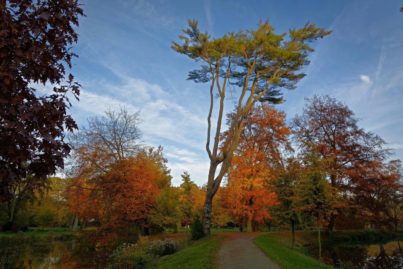 Schlosspark Rheda