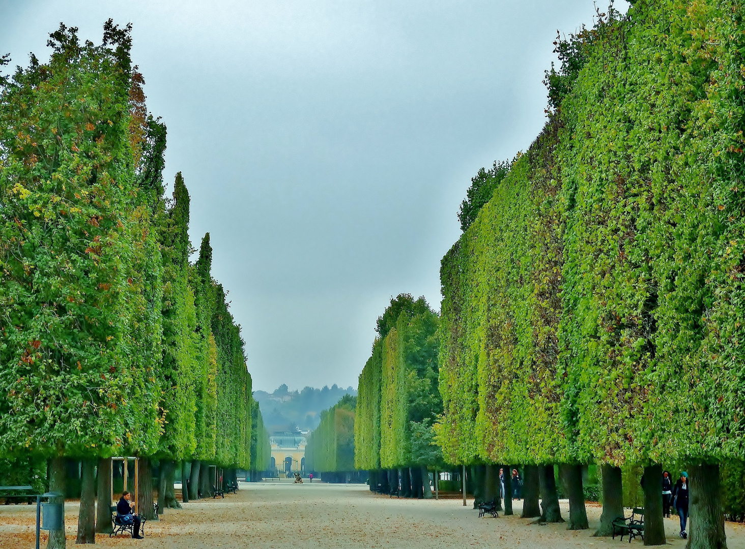 Schlosspark Schönbrunn im Herbst