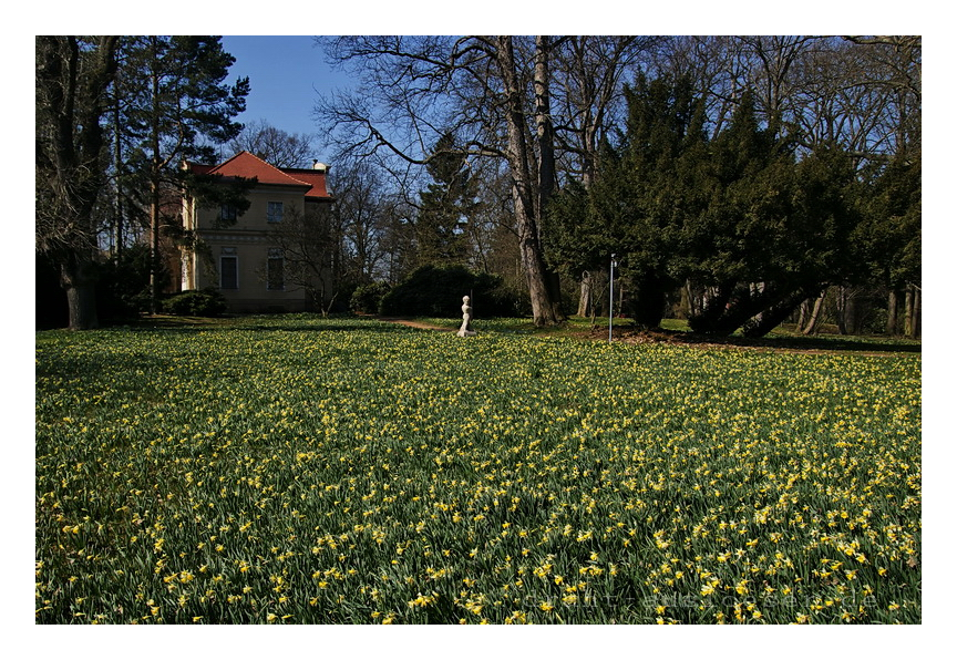 Schlosspark Tannenfeld