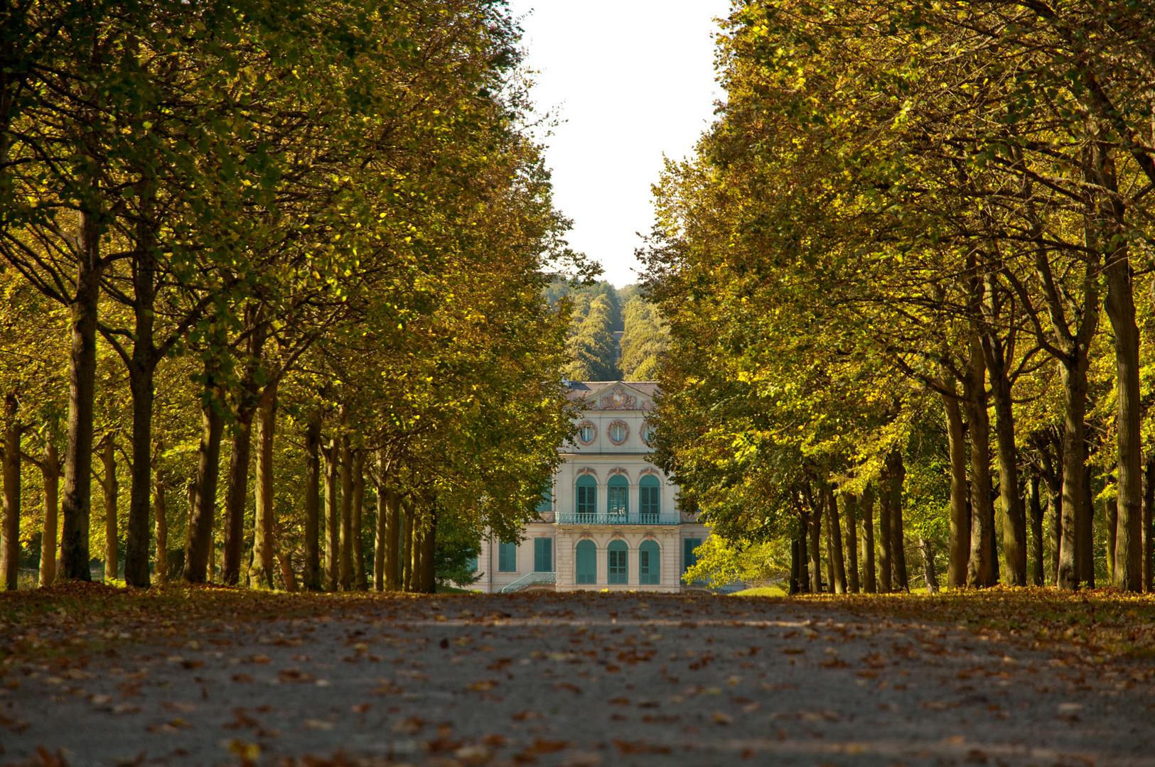 Schlosspark Wilhelmstal, der Herbst kommt.