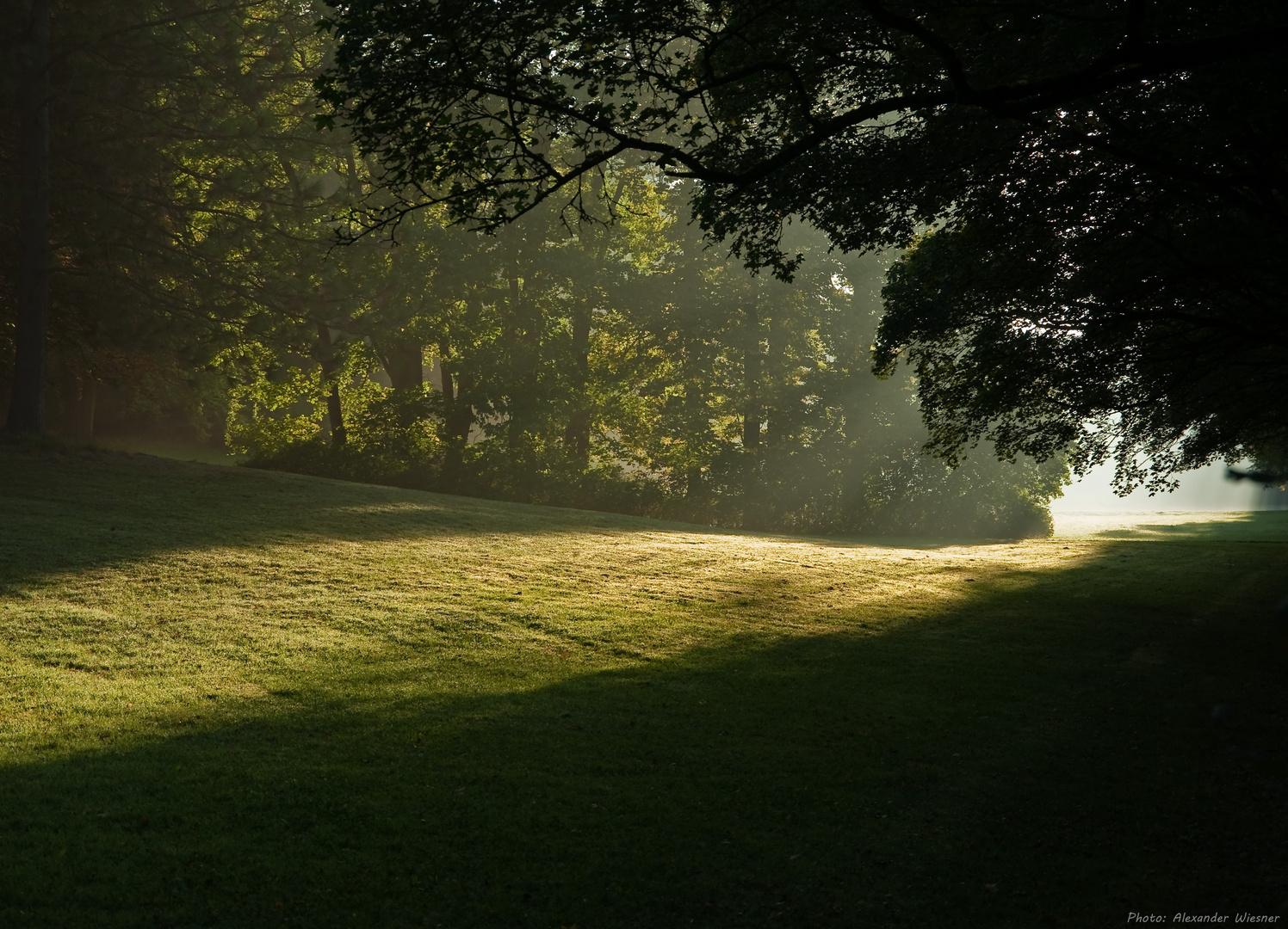 Schlosspark Wilhelmsthal