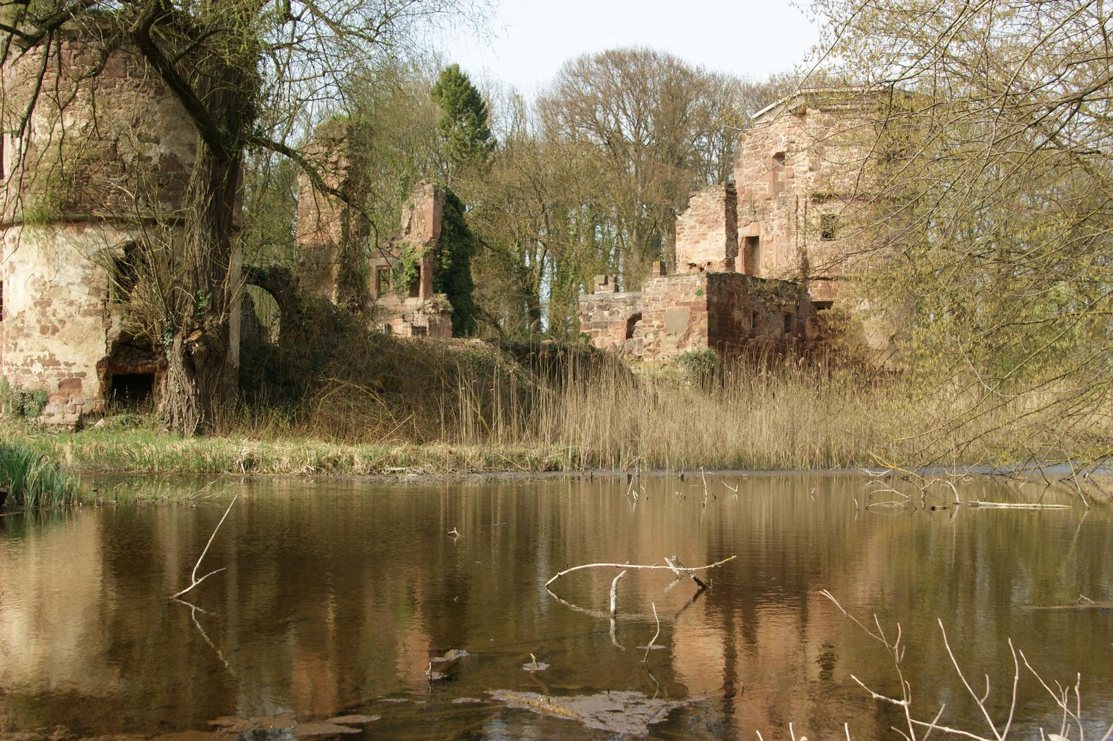 Schlossruine Menzingen - 1