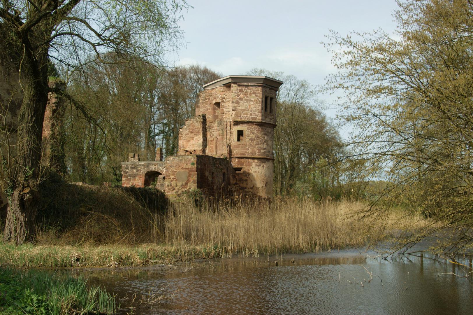 Schlossruine Menzingen - 2