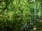 Schloßsee in Celle