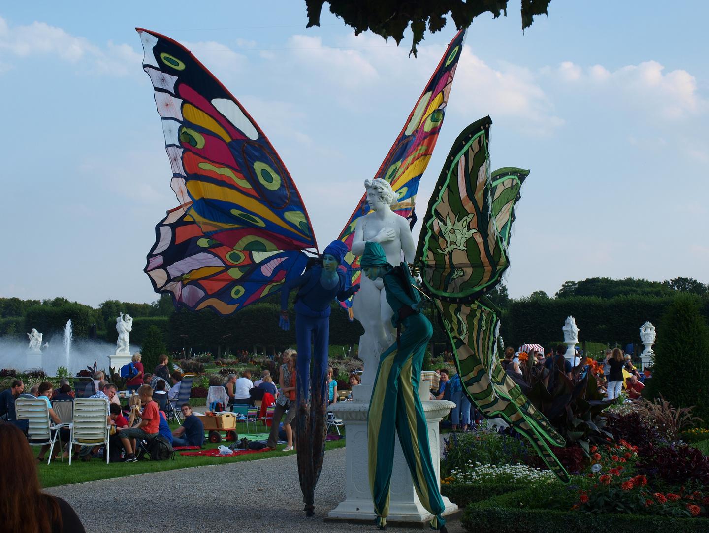 Schmetterling(1)