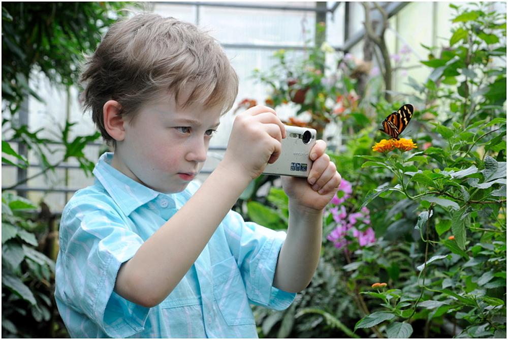 Schmetterlingspark ...