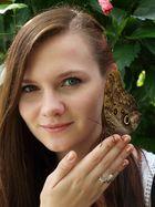 Schmetterlingsshooting II