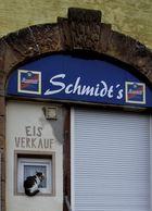 Schmidt's Katze ...