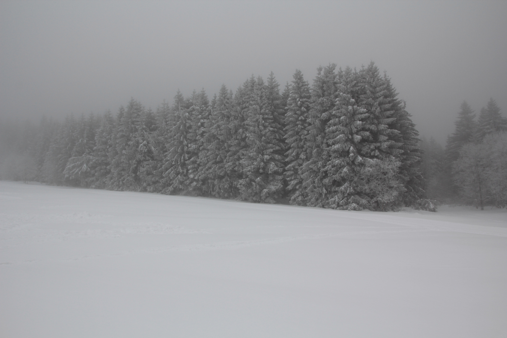 schmiedefeld 2013