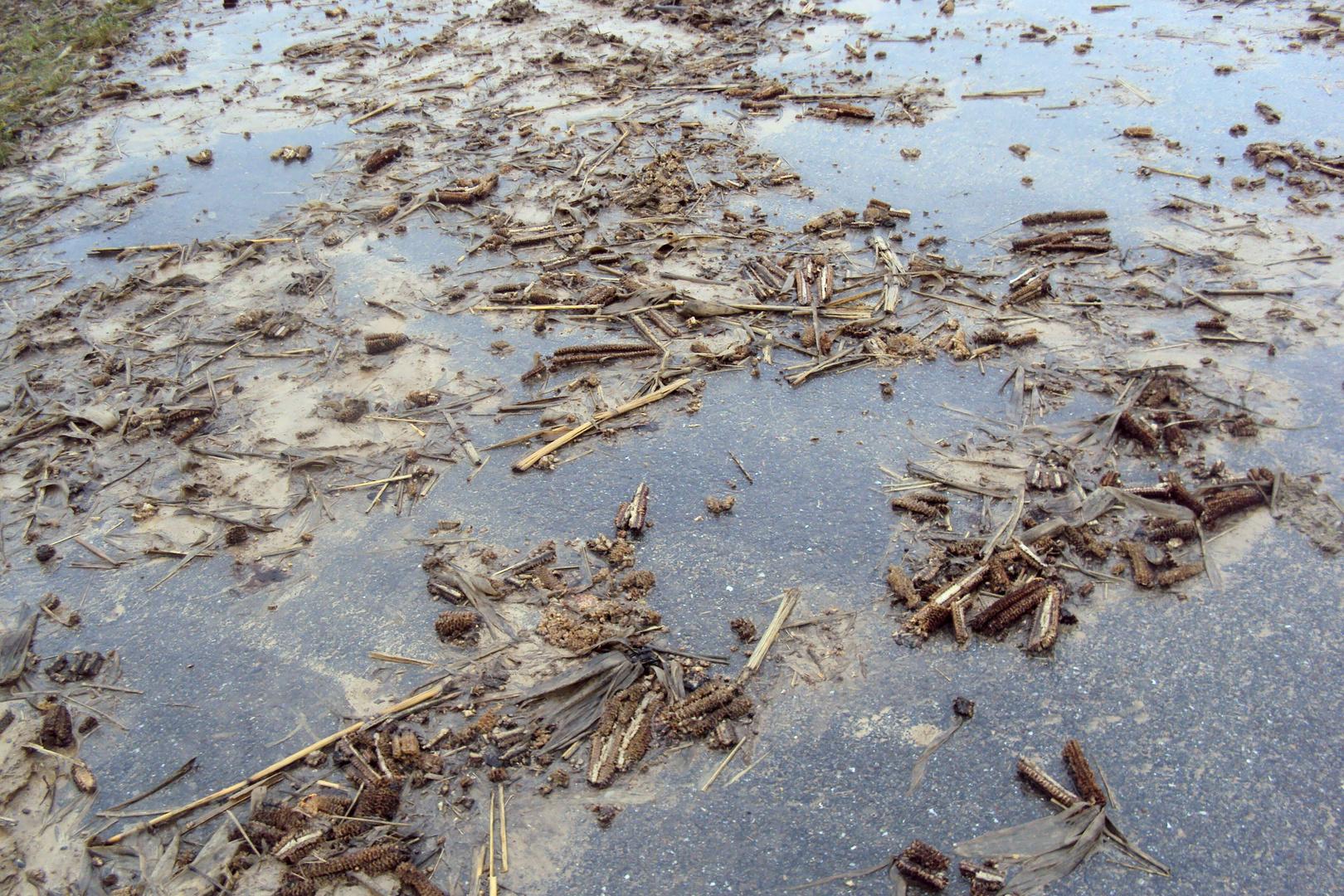 Schmuddelwetter II : Vom Feld auf die Straße