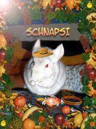 Schnapsi
