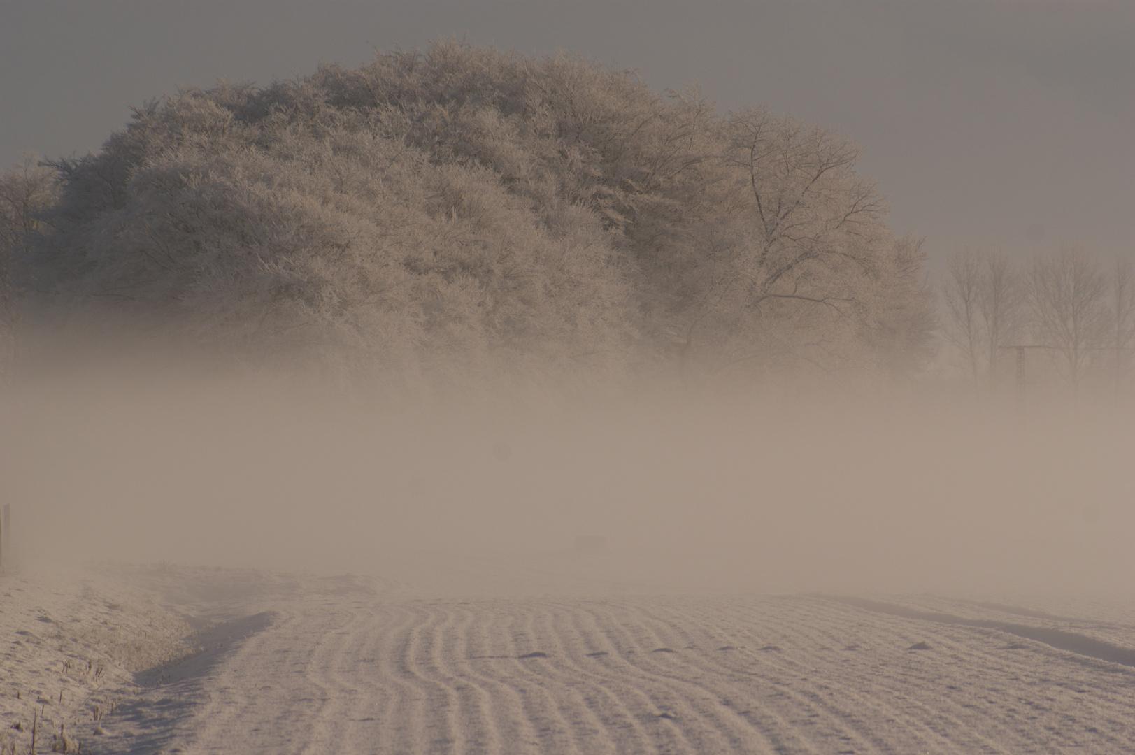 Schnebel-Schnee und Nebel