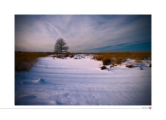 - Schnee -