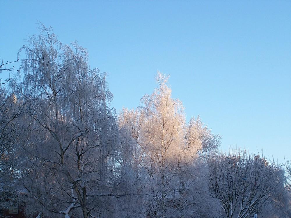 Schnee........